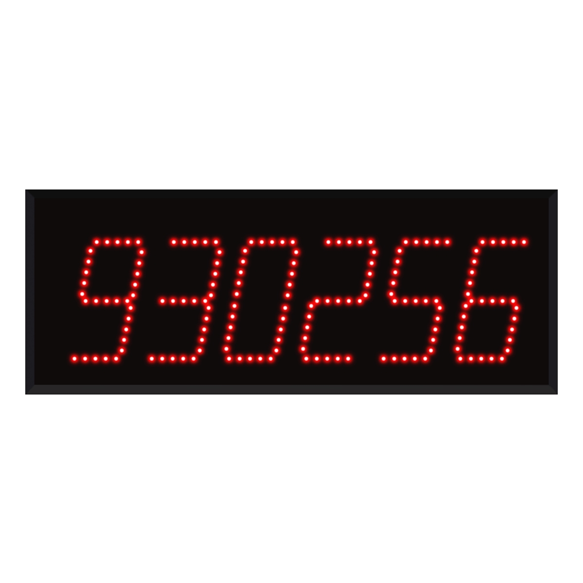 Model 960 (6-Digit) Visual-Pager® Display
